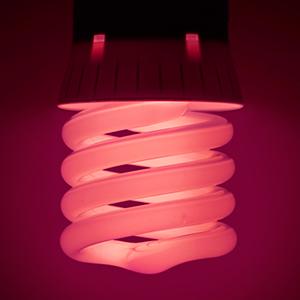 lamp002-p